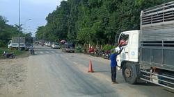 TP.HCM cấp 120 thẻ luồng xanh cho xe vận chuyển hàng hóa từ Lâm Đồng