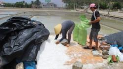 Bình Định: Giá 1kg muối không bằng cốc trà đá, diêm dân không còn mặn mà