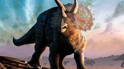 Khủng long đã dần tuyệt chủng từ trước khi thiên thạch rơi xuống Trái đất?