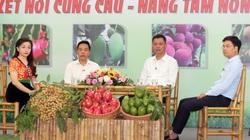 430.000 tấn trái cây cần tiêu thụ, Sơn La mong có thêm kho lạnh để bảo quản