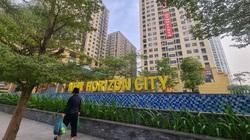 Chủ đầu tư bắt cư dân phải 'gánh' tiền thuê đất diện tích vườn hoa, đường nội khu