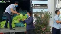 Video: Nông dân TT-Huế chung tay hỗ trợ miền Nam chống dịch, có hộ ủng hộ cả tấn gạo
