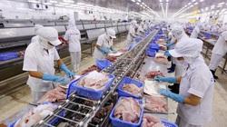 Nhiều nông sản thế mạnh của Việt Nam ngay lập tức được hưởng lợi khi quốc gia này thông qua CPTPP