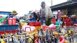 Ninh Thuận: Tạm ngưng hoạt động cảng cá Đông Hải để phòng chống dịch Covid-19