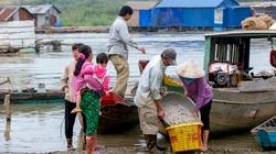 Đồng Nai: Con cá, mớ rau chở nặng ân tình của dân nghèo miền núi gửi về vùng dịch