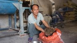 Hóa giải thách thức ngành chế biến thức ăn chăn nuôi (bài 4): Nhà nông tự làm thức ăn, cho lợn ăn dược liệu