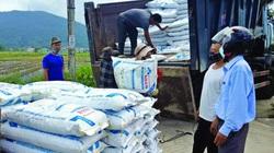 Hơn 3.000 tấn phân bón trả chậm tới tay nông dân