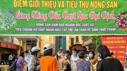 15 tấn nông sản Sơn La được Hải Phòng hỗ trợ tiêu thụ không lợi nhuận