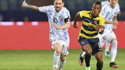 Kết quả Copa America 2021 ngày 4/7: Messi thăng hoa, Argentina thắng đậm Ecuador