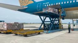 Vietnam Airlines khó khăn, Công ty con vẫn đặt kế hoạch chia cổ tức 75%