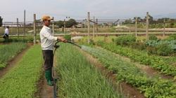 Quỹ Hỗ trợ nông dân ở Quảng Ninh hỗ trợ nông dân làm ăn lớn có thu tiền tỷ