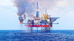 Giá xăng dầu tăng liên tiếp trong 7 tháng qua, nhiều doanh nghiệp dầu khí báo lãi sốc