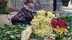 Tắc nghẽn đầu ra, Lâm Đồng kêu gọi hỗ trợ tiêu thụ hoa và nông sản cho nông dân địa phương