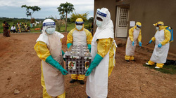 Bệnh nhân thiệt mạng do virus cực nguy hiểm ở Guinea có thể đã lây cho 155 người khác