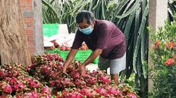 """Trung Quốc coi loại trái cây này của Việt Nam là một """"sản phẩm quan trọng"""", là quả gì?"""