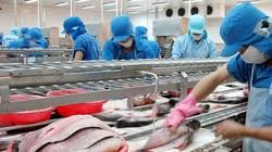 Thủy sản Vĩnh Hoàn (VHC) lên kế hoạch đầu tư vào nhà máy thủy sản Feed One