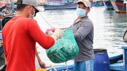 Ninh Thuận: Ngư dân trúng đậm vụ cá nam, có ghe sau 1 đêm ra biển bắt được 400-500 giỏ cá, lời 40 triệu