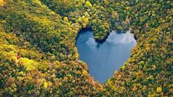 """Chiêm ngưỡng hình ảnh những trái tim """"độc"""" trên thế giới"""