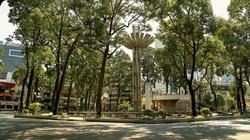 Nhật ký giãn cách: Sài Gòn ơi, ngày mai sẽ nắng đẹp