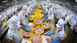 """Loạt doanh nghiệp đang """"lột xác"""" để thành """"người khổng lồ"""", đưa Việt Nam thành trung tâm chế biến thuỷ sản lớn trên thế giới"""