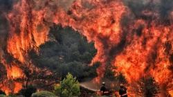 Giới khoa học cảnh báo về thảm họa không thể đảo ngược trên Trái đất