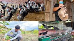 Quảng Ngãi: Khởi nghiệp ở làng mới