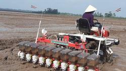ĐBSCL: Nước từ thượng nguồn sông Mekong thiếu hụt 10%, nguy cơ xâm nhập mặn đến sớm