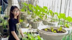 """Gia đình """"sống vui sống khỏe"""" với vườn rau xanh um giữa mùa dịch"""