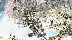 Bằng chứng về sự xuất hiện của Bigfoot làm dấy lên nhiều tranh cãi