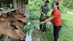 Lai Châu: Xã biên giới Pa Ủ nhiều thay đổi trong xây dựng Nông Thôn mới