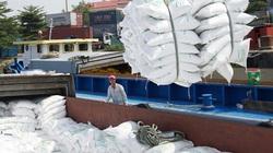 Doanh nghiệp chế biến xuất khẩu gạo: Gánh nặng chi phí đe dọa nỗ lực phát triển bền vững