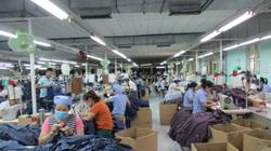 Đà Nẵng: Giải quyết nhanh các quyền lợi cho NLĐ, tuyên truyền người dân tham gia BHXH, BHYT