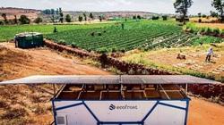 """Nền nông nghiệp châu Âu: Chính xác từng ly, những """"siêu"""" nông dân"""