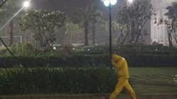 Bão số 5 Côn Sơn gây mưa to, gió lớn dọc dải miền Trung từ đêm nay (10/9)
