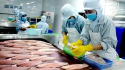 """Trung Quốc nâng hàng rào thương mại, cách nào """"cứu"""" đàn cá khổng lồ """"mắc cạn"""" ở miền Tây?"""