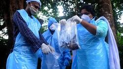 Virus đáng sợ hơn Covid-19 khiến bé trai 12 tuổi thiệt mạng, Ấn Độ ráo riết dập dịch
