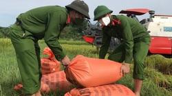 Thanh Hóa: 40 chiến sỹ công an huyện Như Thanh giúp dân vùng giãn cách gặt lúa chạy bão Conson