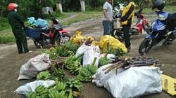 Quảng Nam: 60 suất quà ý nghĩa giữa mùa dịch đến với Hội Nông dân Đà Nẵng và TP.Hồ Chí Minh