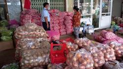 4,2 tấn tỏi Trung Quốc vi phạm nhãn tại Tiền Giang