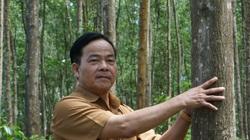 TT-Huế: WWF-Việt Nam viện trợ gần 5 tỷ giúp người dân, doanh nghiệp quản lý rừng bền vững