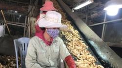 """Bán nông sản sang Trung Quốc, doanh nghiệp Việt phải bỏ thói quen """"thời vụ"""""""
