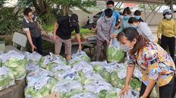 Lâm Đồng: Nông dân có rau góp rau, có tiền đóng góp tiền, ủng hộ hàng nghìn tấn nông sản tiếp sức miền Nam
