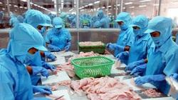 Doanh nghiệp thủy sản sắp hết ngưỡng chịu đựng, đề xuất tiêm vaccine gấp để huy động công nhân đi làm