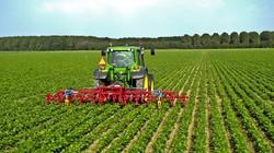 Các nhà nghiên cứu đưa ra đánh giá về nông nghiệp bền vững