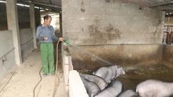 Ông Pẻm vươn lên thành nông dân giỏi trên quê mới tái định cư thuỷ điện Sơn La
