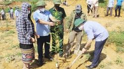"""Nghệ An: Hội Nông dân, Đồn Biên phòng ra quân hưởng ứng chương trình trồng 1 tỷ cây xanh """"Vì một Việt Nam xanh"""""""