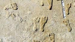 Phát hiện dấu chân kỳ lạ có liên kết với loài người thời cổ đại