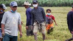 Người dân Cần Thơ đi bắt chuột đồng những ngày đầu thu hoạch lúa Thu Đông 2021