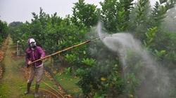 Ưu tiên và hỗ trợ sử dụng thuốc bảo vệ thực vật sinh học