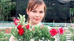 """Đồng Nai: Lai tạo hàng loạt """"hoa hồng sa mạc"""" độc, lạ, anh nông dân thu nửa tỷ mỗi năm"""